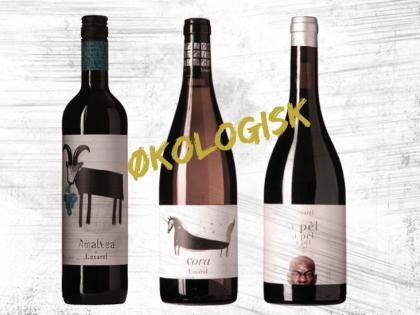 Nye Økologiske vine fra Loxarel