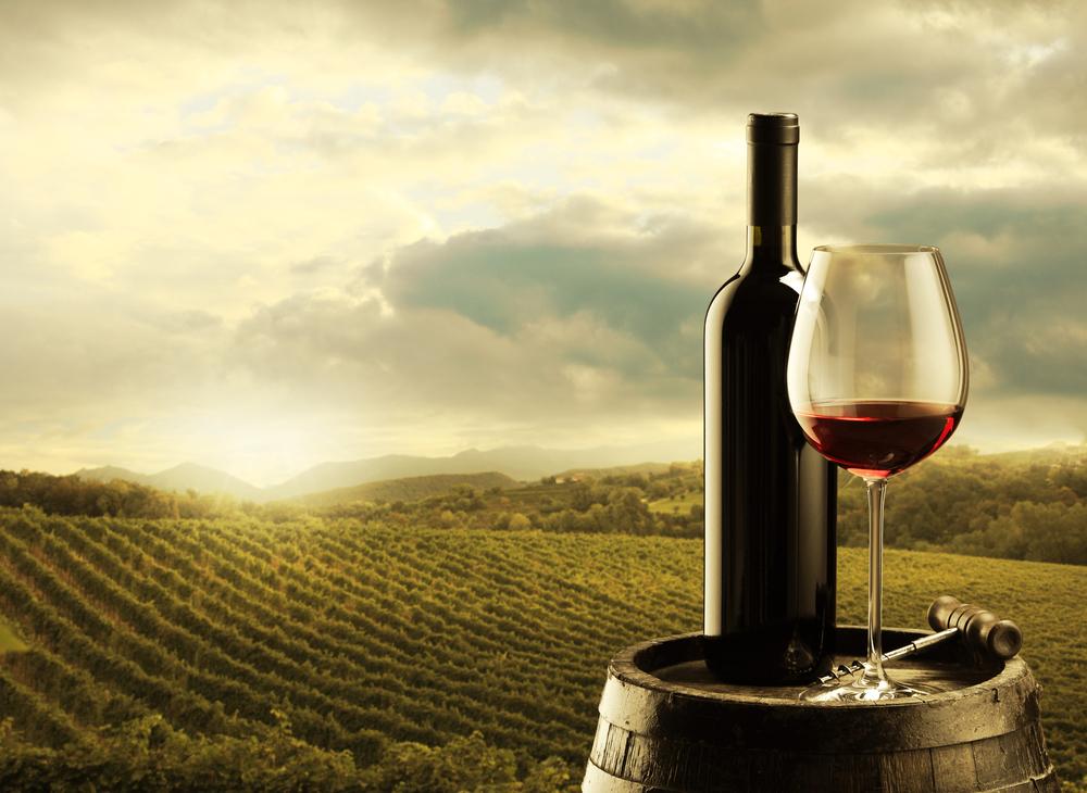 vinsalget vinsmagning vin